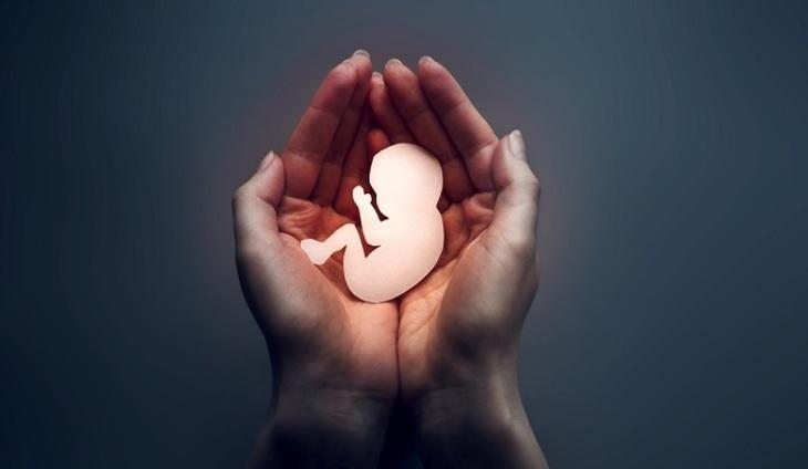 Что необходимо для зачатия?